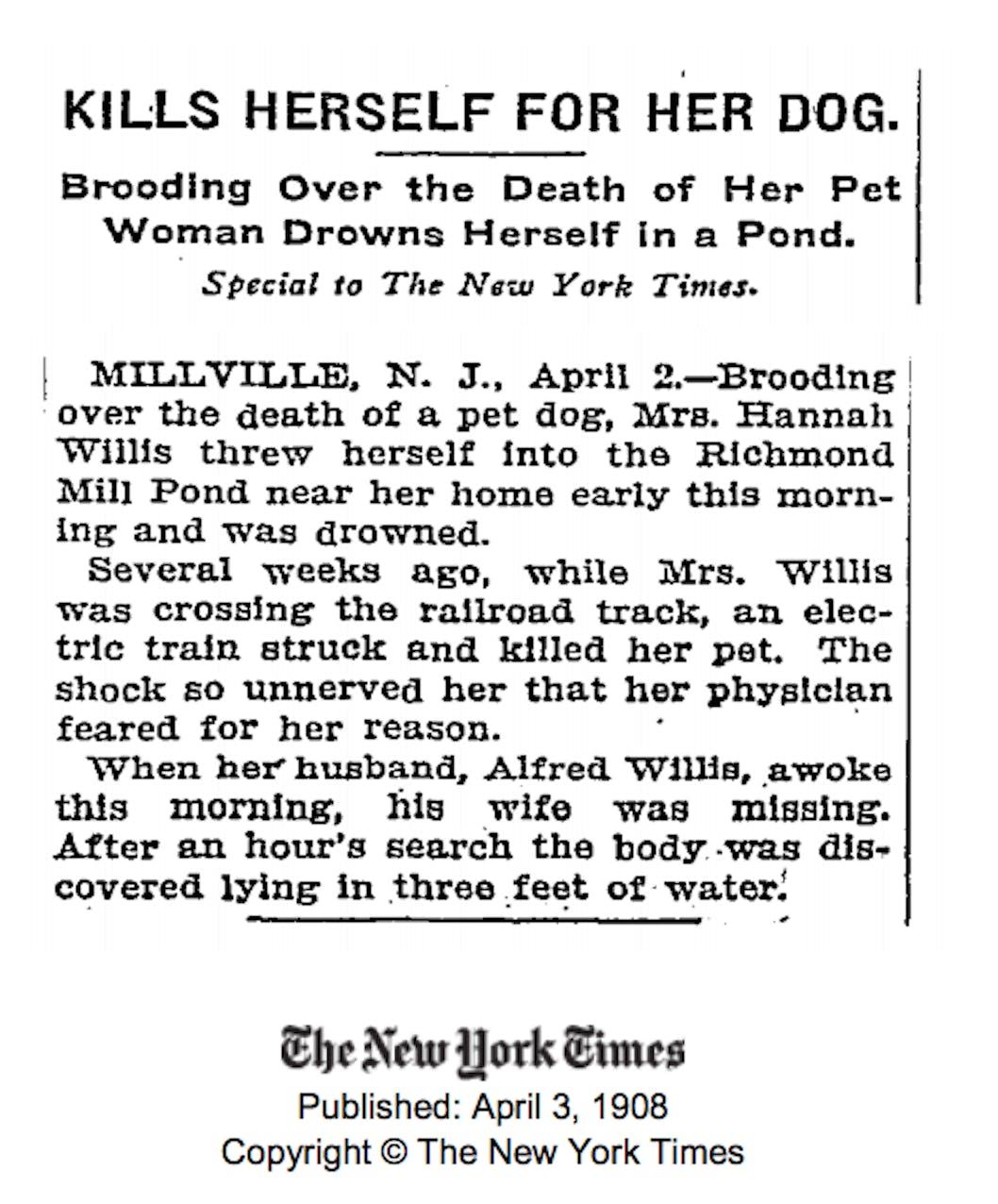 pet death