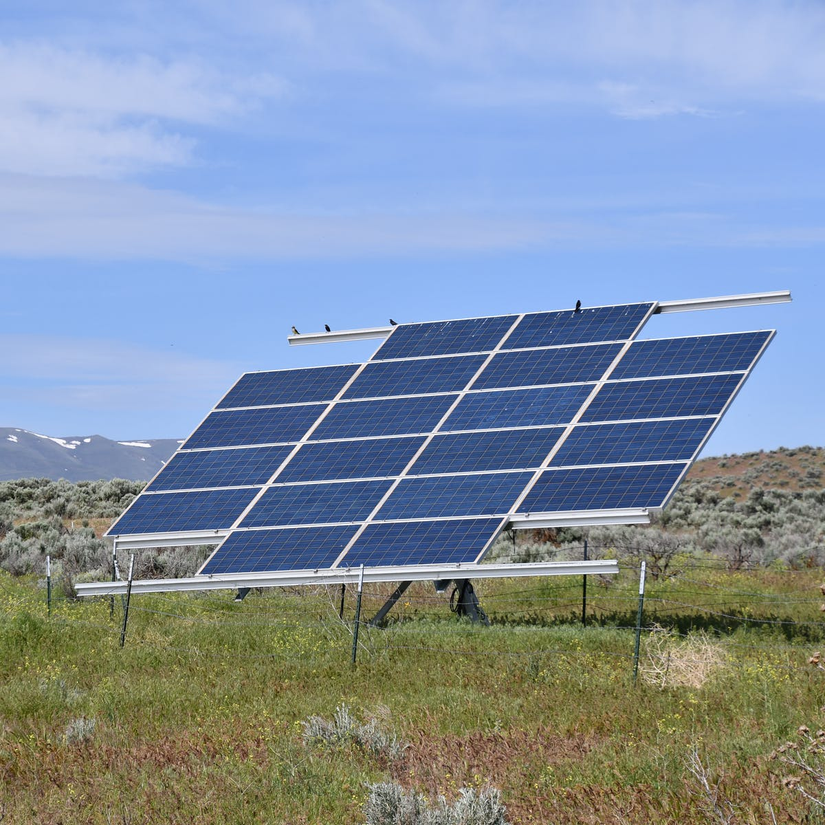 Off-Grid Solar Energy Use Is About to Explode Thanks to These Key Regions