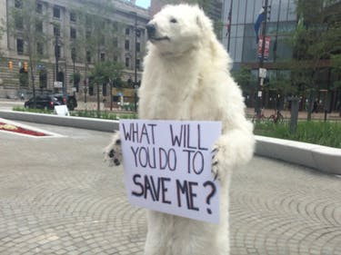 Listen to This Man in the Polar Bear Costume at the GOP Convention