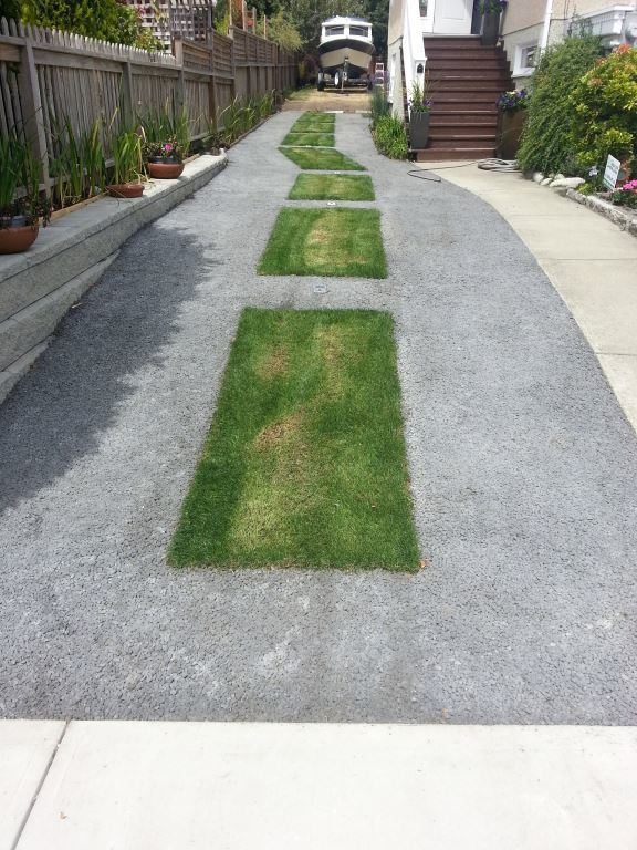 Strips of grass down the center saved Manuel a bit on paving costs.