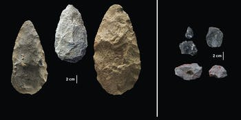 Early tools, ancient humans