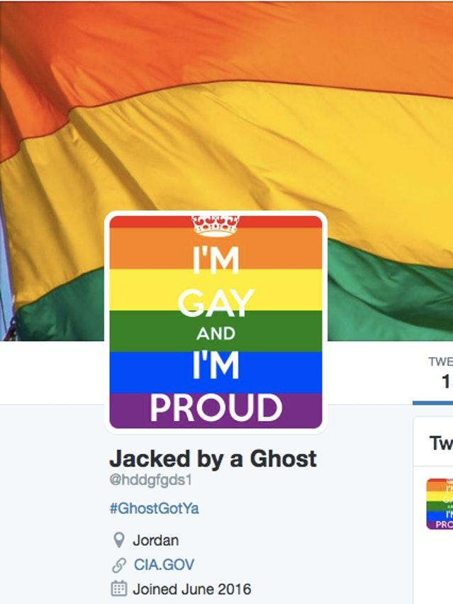 A Hacker Replaced 200 ISIS Twitter Accounts with Gay Pride Images and Gay Porn