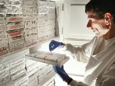 Data Written on DNA Will Be Stored in Freezer Banks in 7 Years