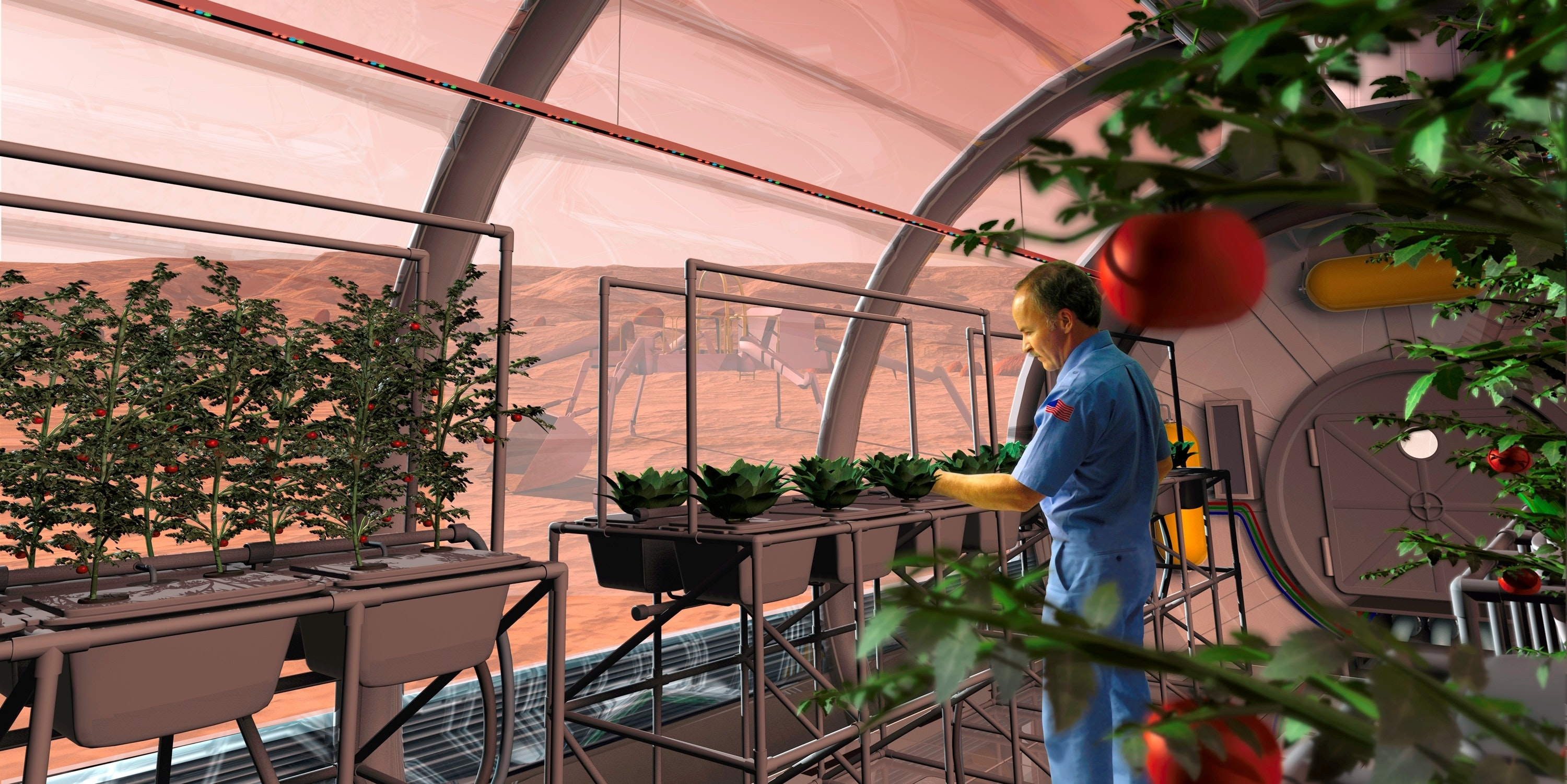 Artist's rendering of an astronaut in a Mars greenhouse.