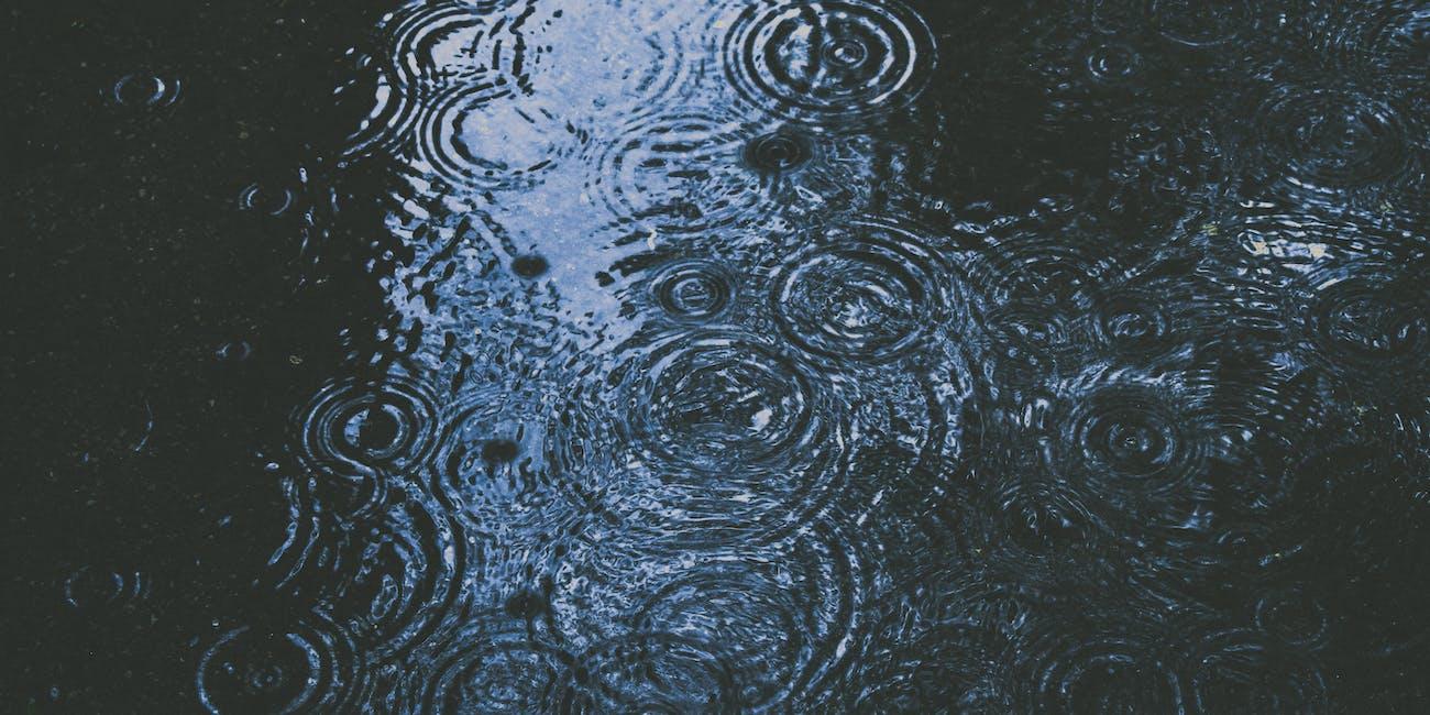petrichor rain smell