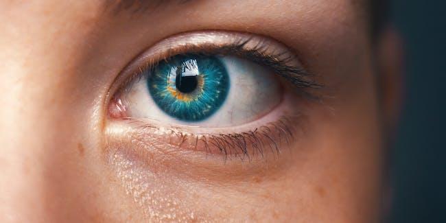 eye, eye tracking,
