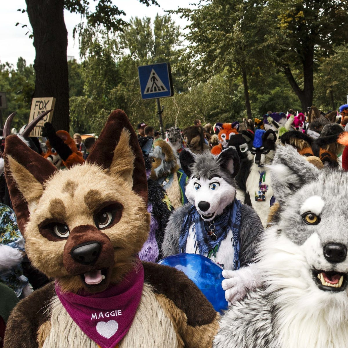 New Data Shows Furries Are Rapidly Growing in Number - But