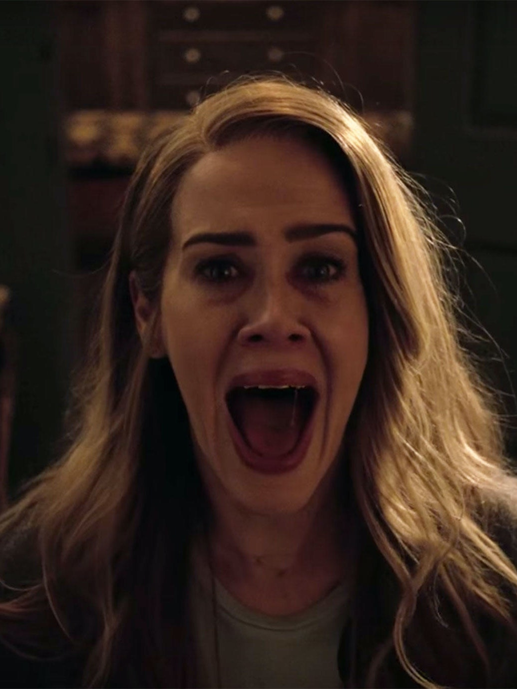 'American Horror Story: Roanoke'