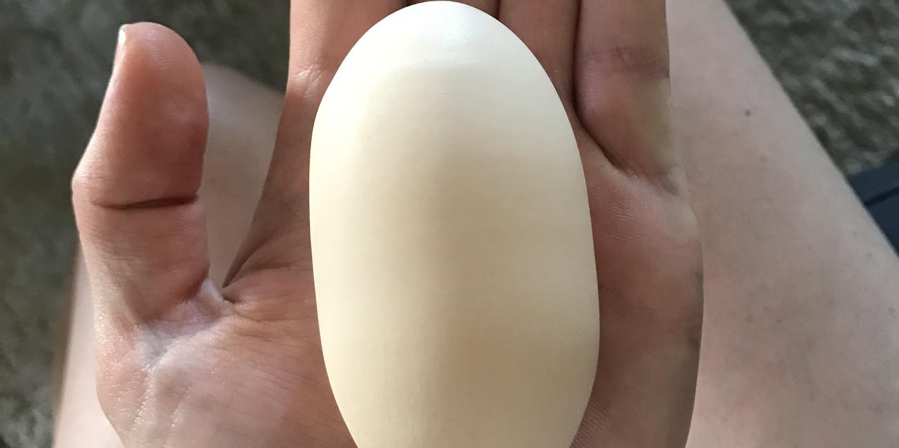 that's a long egg