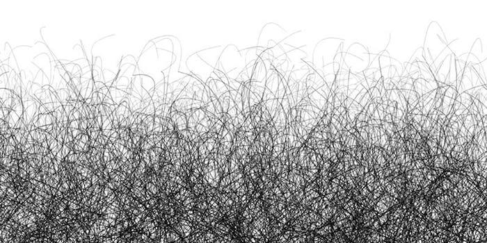 as_pubic_hair