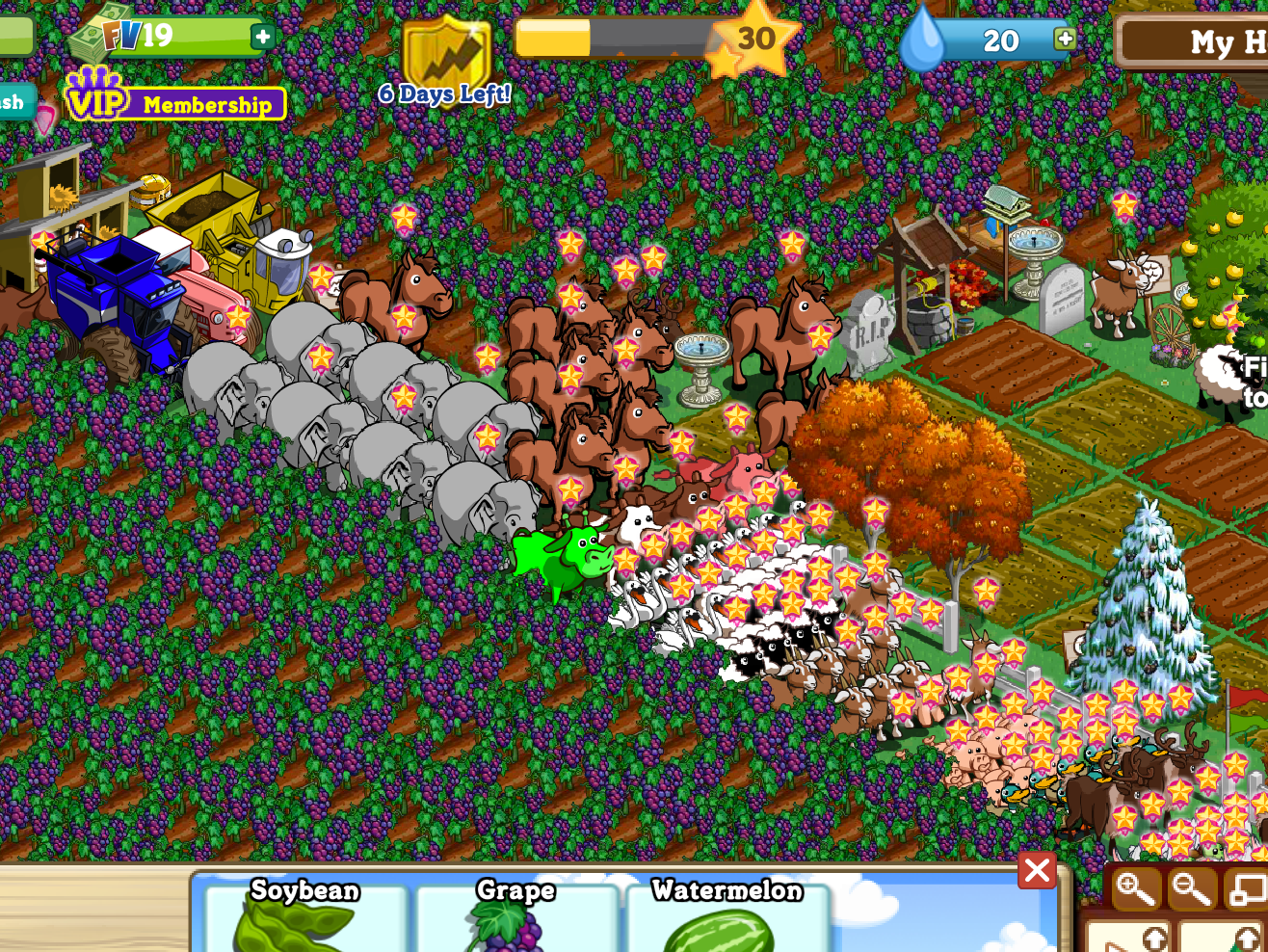 I Went Back to My Farmville Ranch and It Was Exactly the Damn Same
