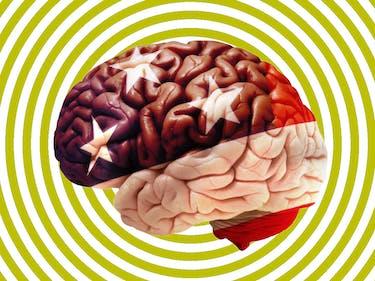 patriotism brain