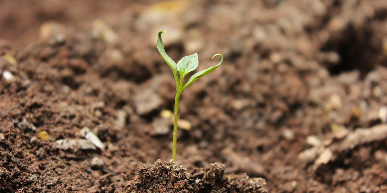 soil climate change
