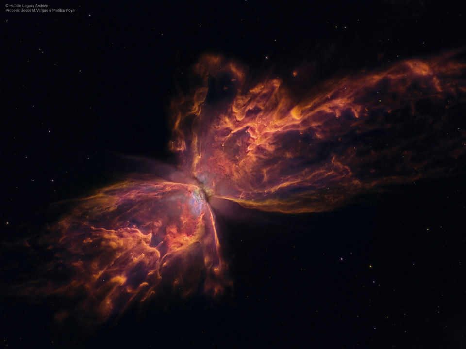 The Butterfly Nebula from the eye of the Hubble Space Telescope.