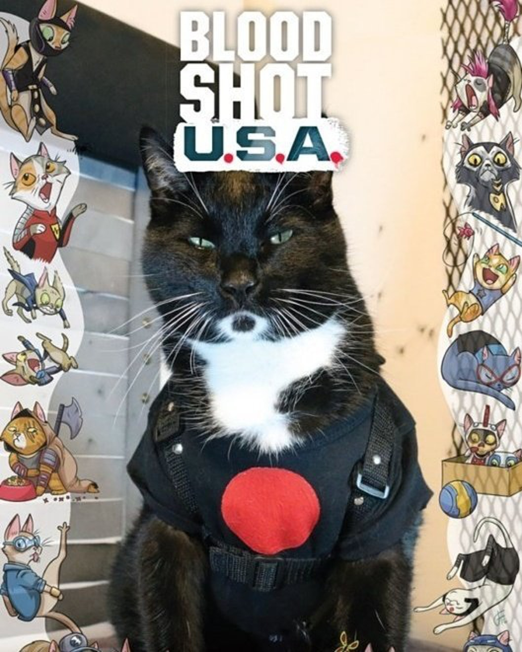 Bloodshot USA Cat Cosplay Variant Cover for Valiant Comics