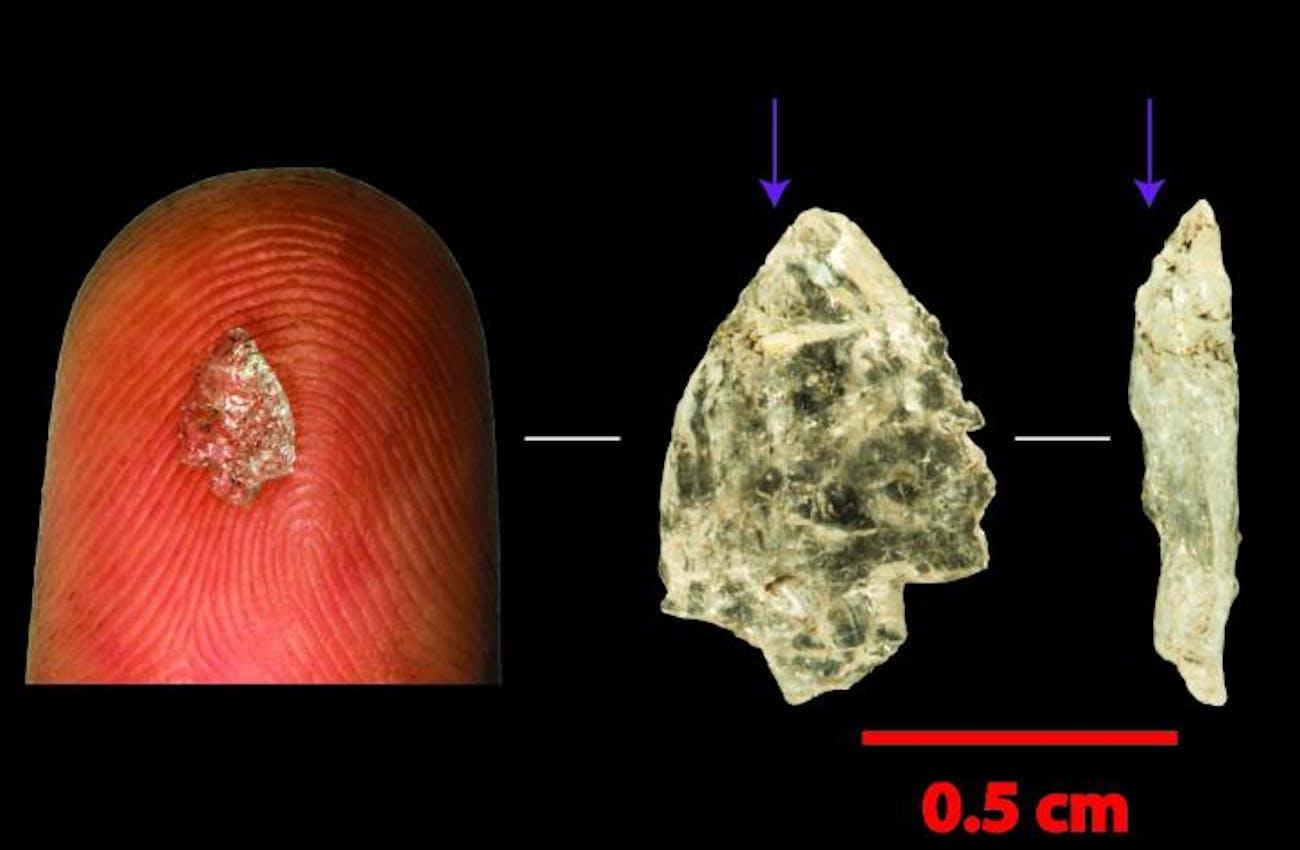 stone flake