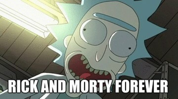 The 36 Best 'Rick and Morty' Memes | Inverse