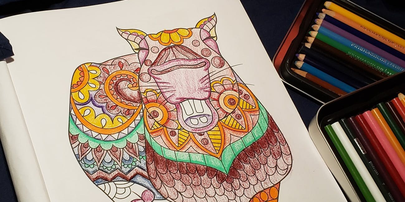Pursuit of capyness: Why one coloring book can make a ...