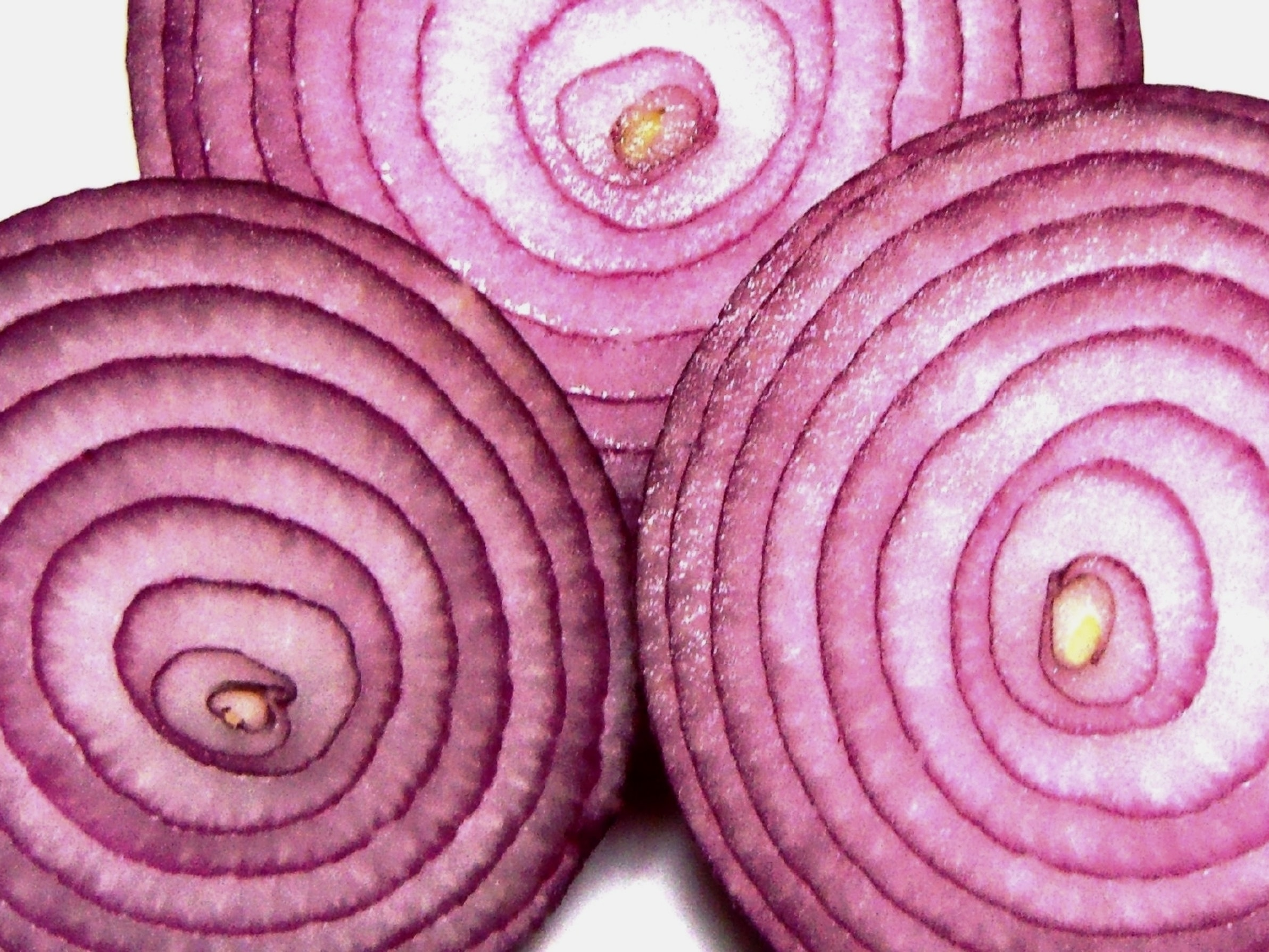 """Tor stands for """"The Onion Router."""""""
