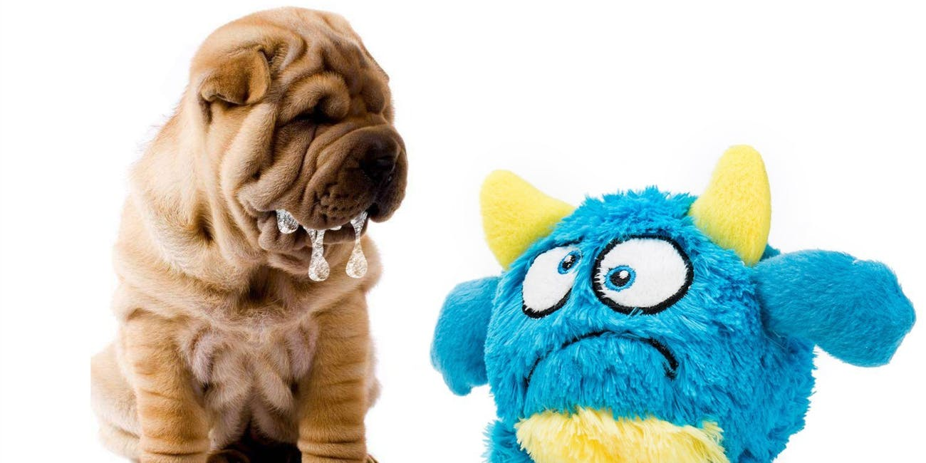 lizpet monster ball toy dog