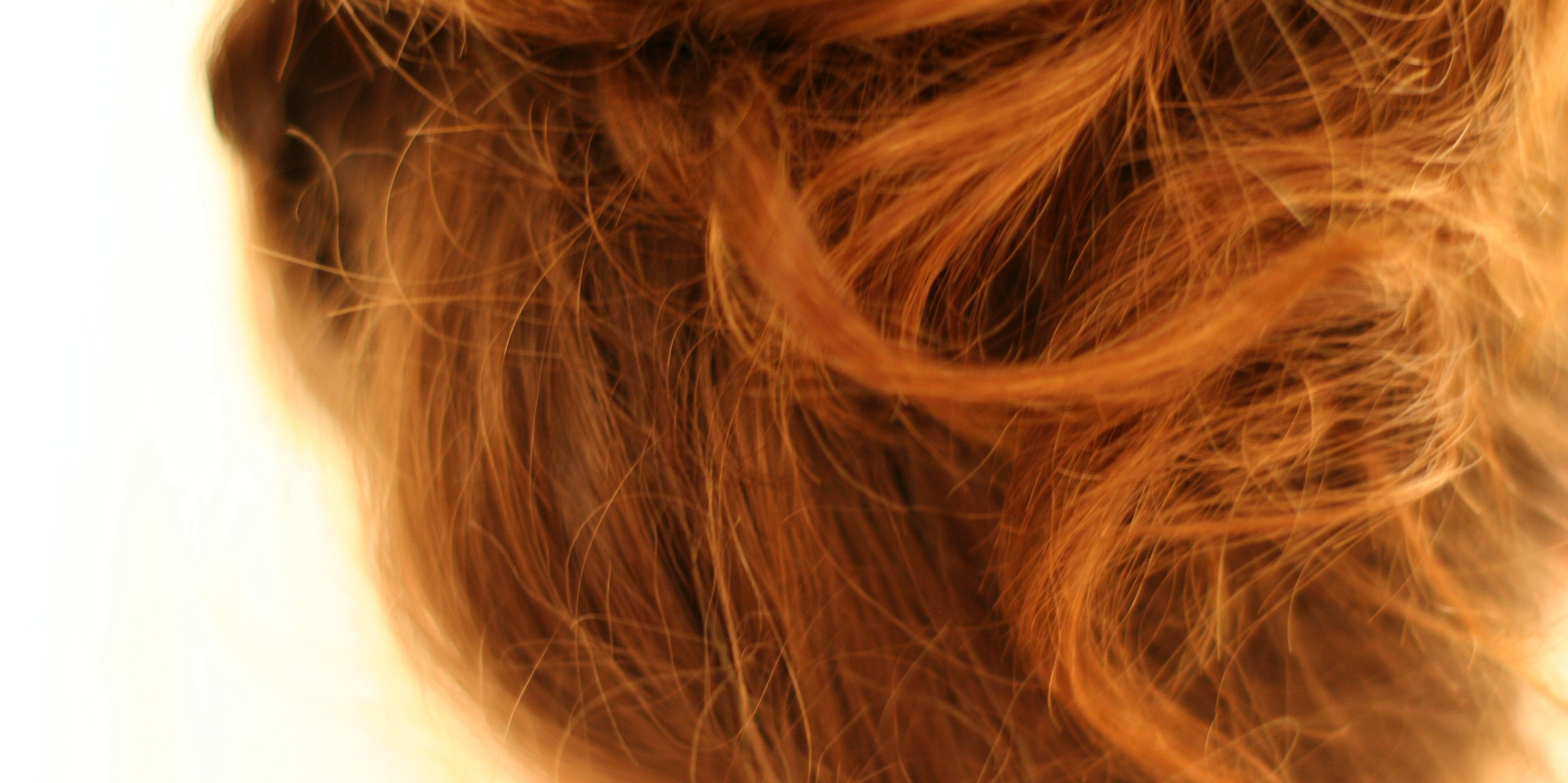 Your Hair Now Reveals These Intimate Personal Details