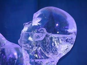 Empty Headed Thinker