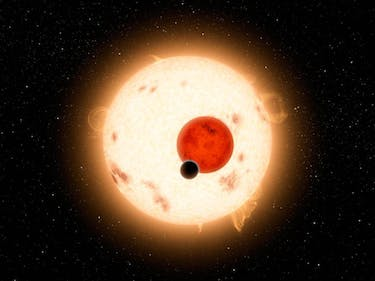 Why We Should Look for Alien Life on Exomoons