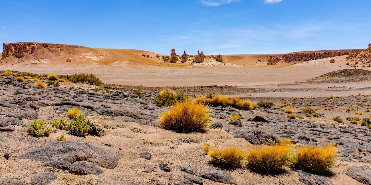 Near Salar de Tara, Atacama desert, Chile
