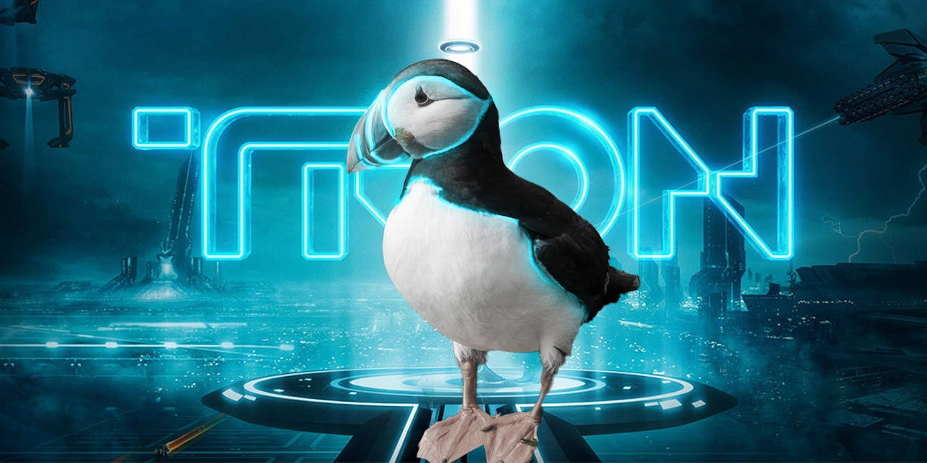 Puffins are 'Tron' now. Deal with it.