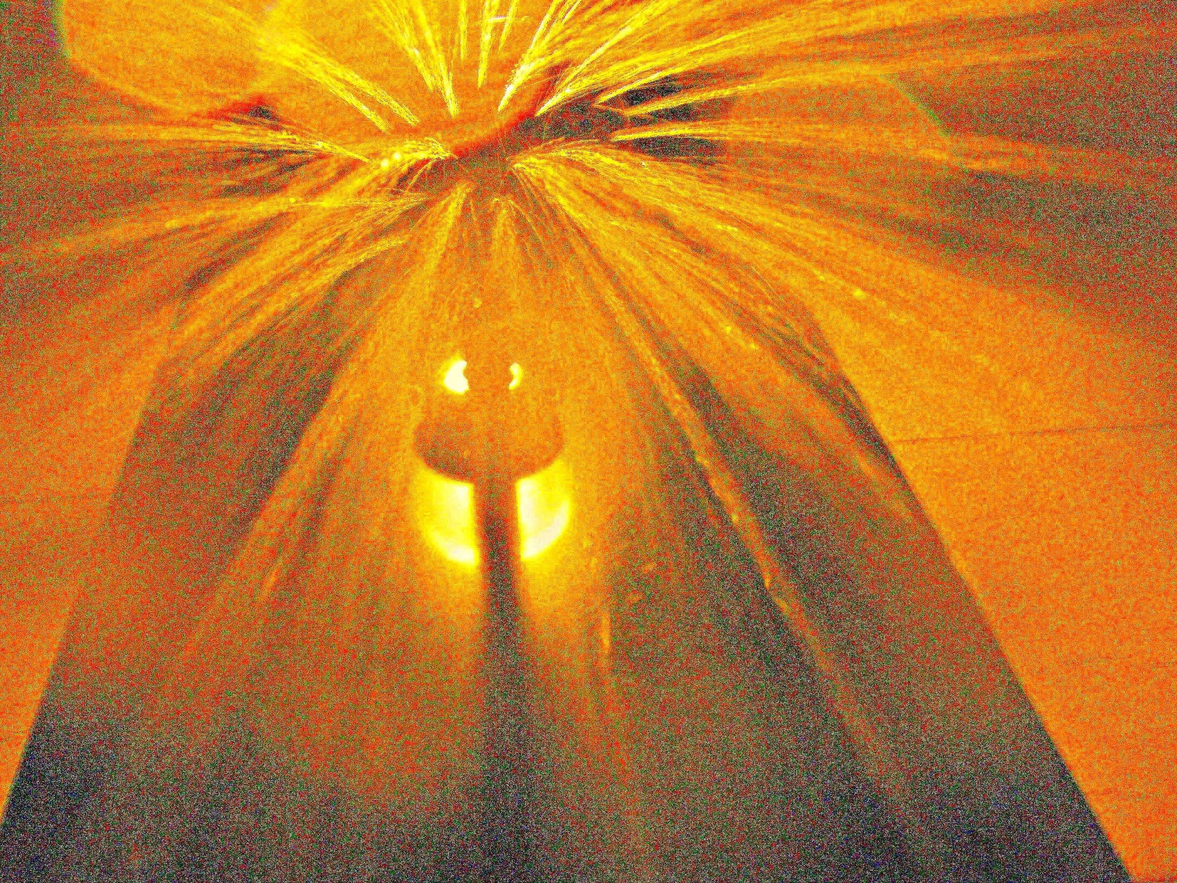 donald trump golden shower