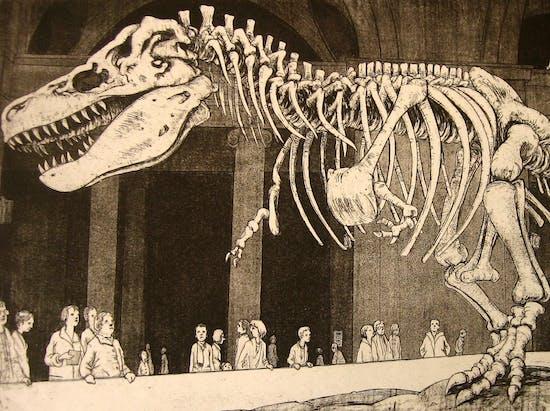 Sue the Tyrannosaur Has a Sexual Identity Crisis