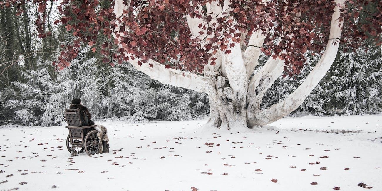 winterfell godswood