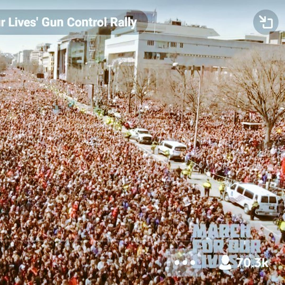 """4 Photos Show Massive Crowds at """"March For Our Lives"""" Protest in D.C."""