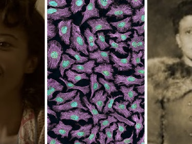 The Science of Why Henrietta Lacks Is 'Immortal' In New Film