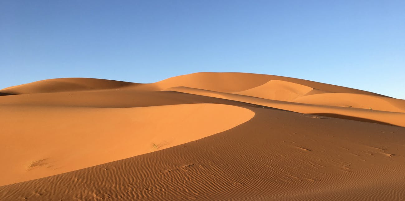solar and wind farms in the sahara