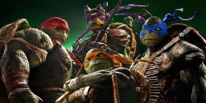 Real ninja turtles