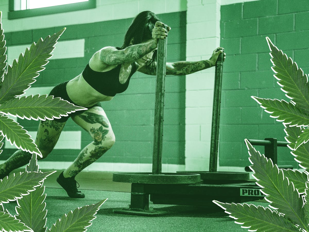 Can Cannabis Improve Exercise? 2 Reasons Athletes Work Out With Weed