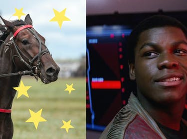Finn Rumored to Ride a Space Horse in 'The Last Jedi'