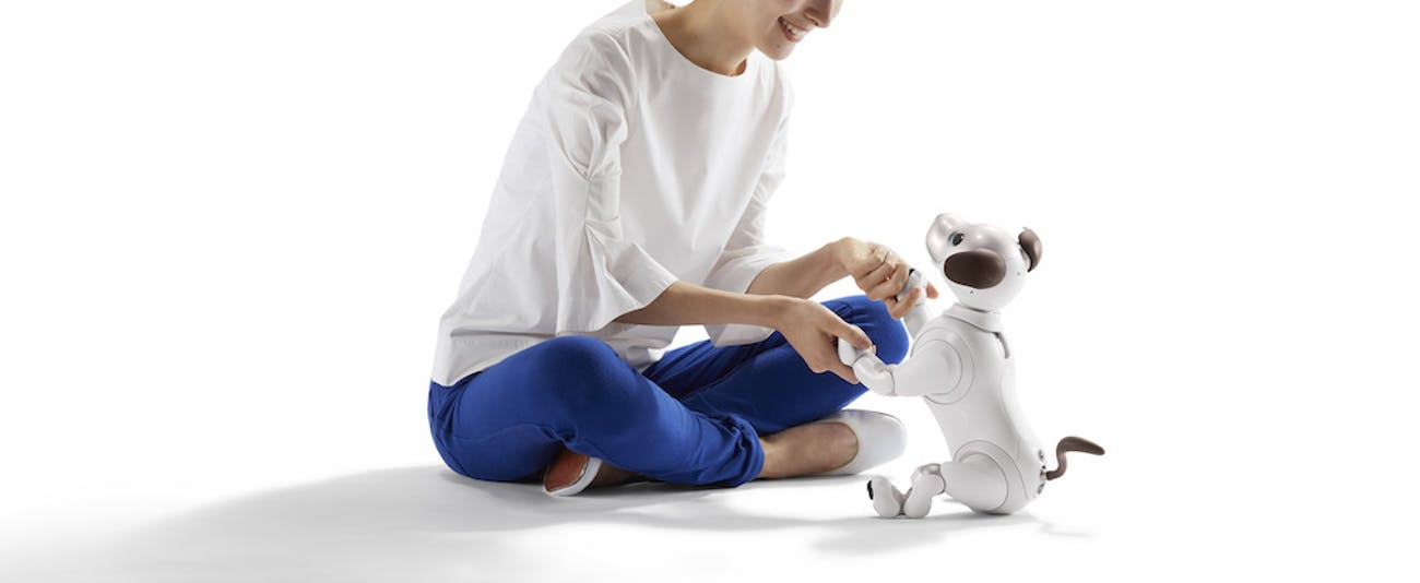 sony robot dog aibo