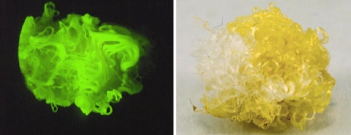 Micrscopic image of the cotton fibers after incorporation of the fluorescent exogenous molecule.
