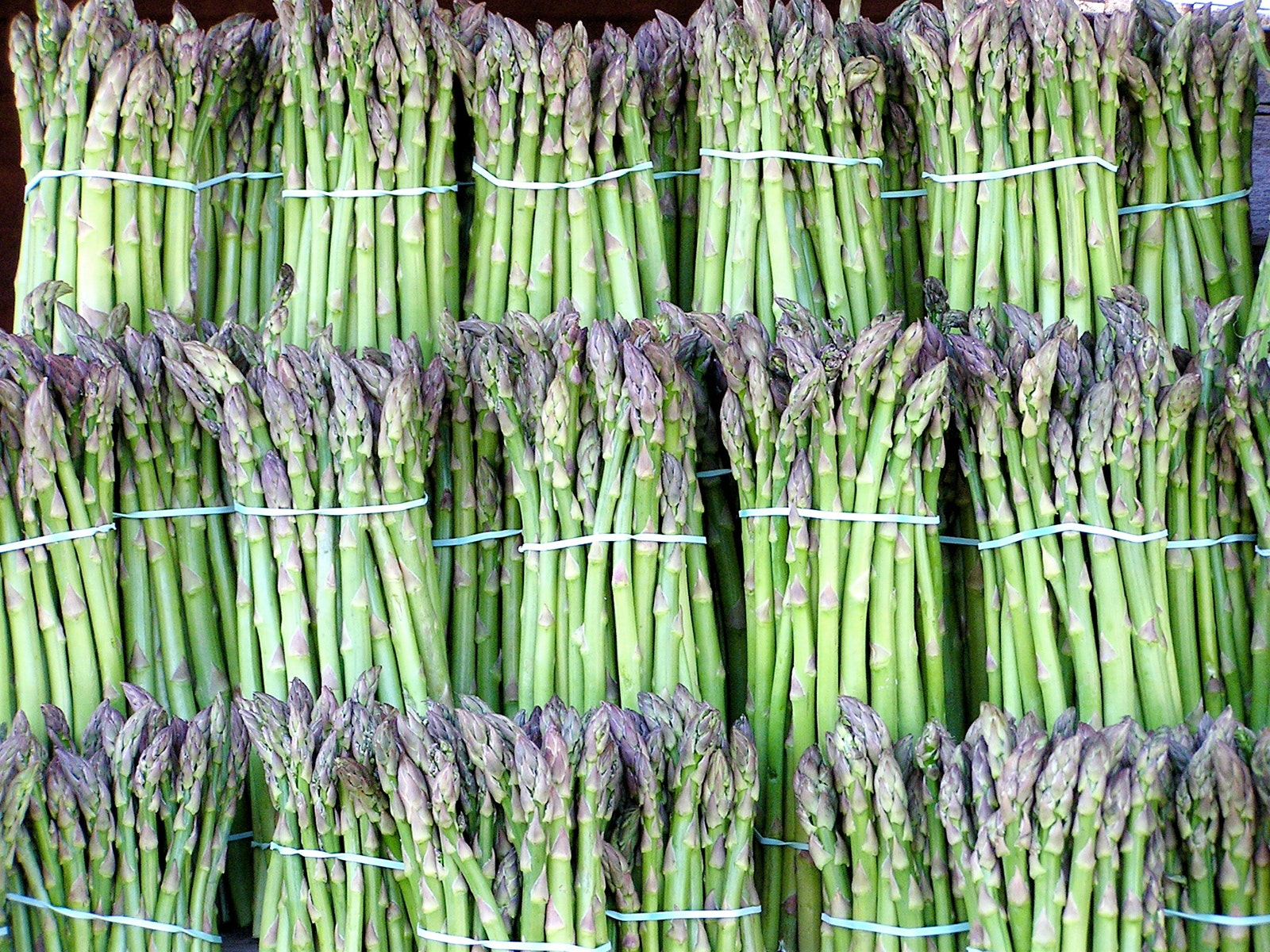 The science of asparagus pee.
