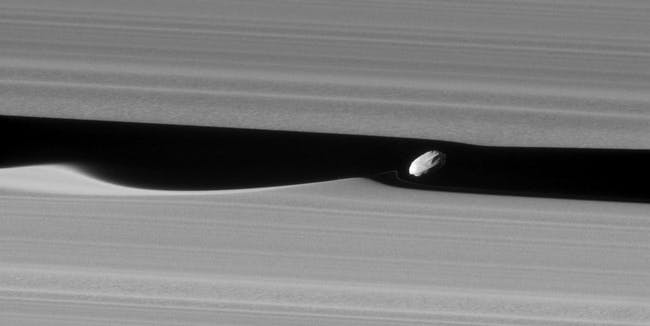 NASA's Cassini spacecraft took an image of Saturn's moon Daphnis. This is the closest image we have so far of the wave-making moon.