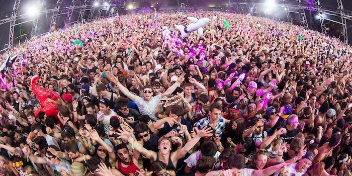An enthusiastic crowd at Coachella