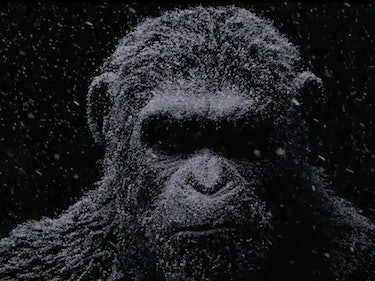 New 'Planet of the Apes' Teaser Hints at Nuclear Winter