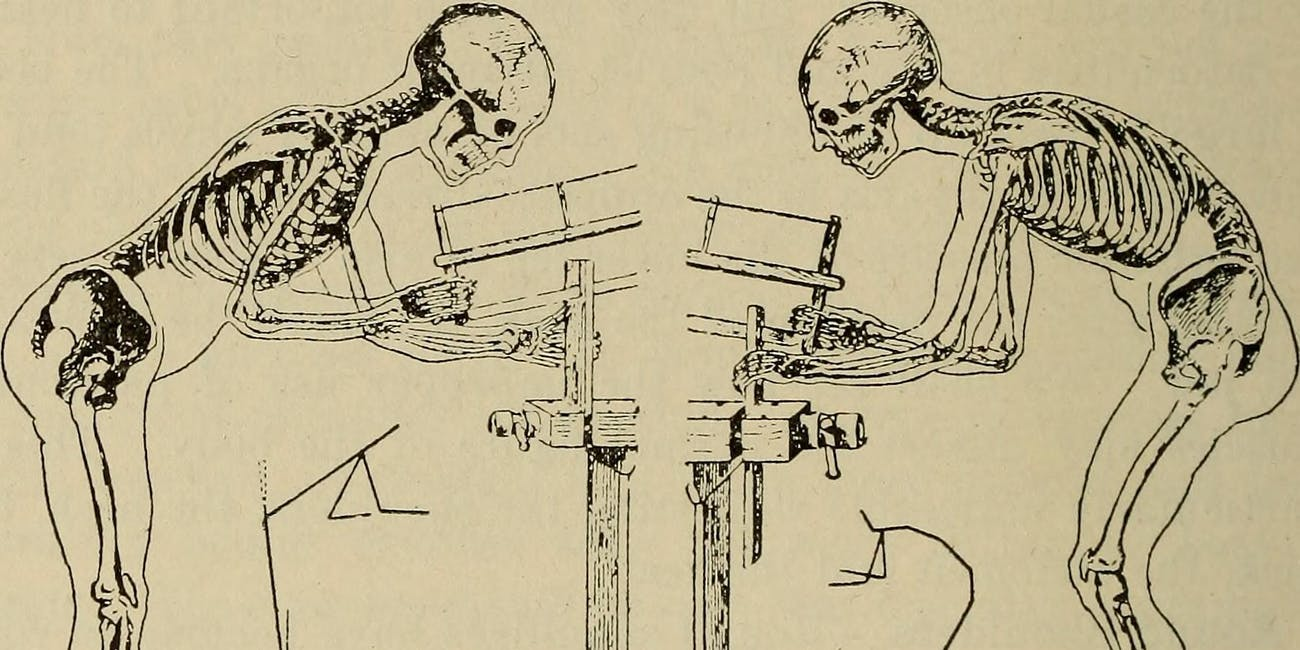 "Image from page 63 of ""Hygiene, dental and general"" (1920)"