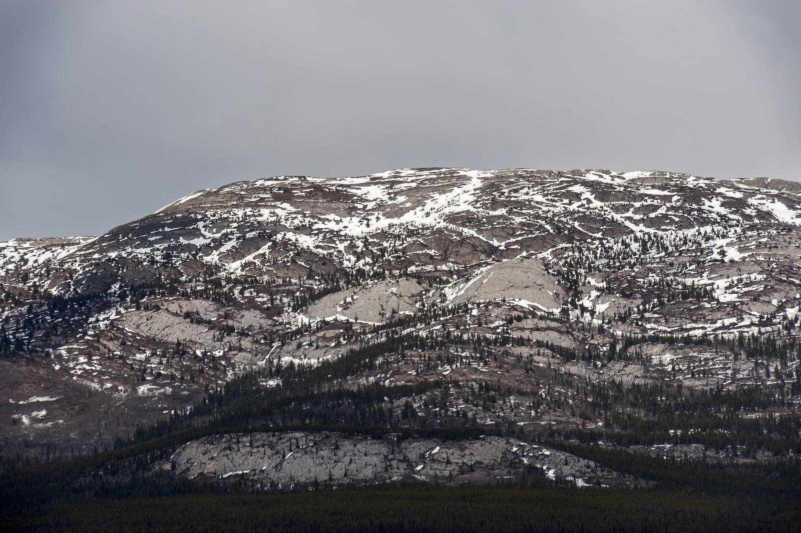 Grey Mountain in Whitehorse, Yukon. The scene of the crime.