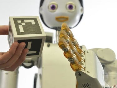 What Kind of Domestic Robot Will OpenAI Bring to Our Homes?