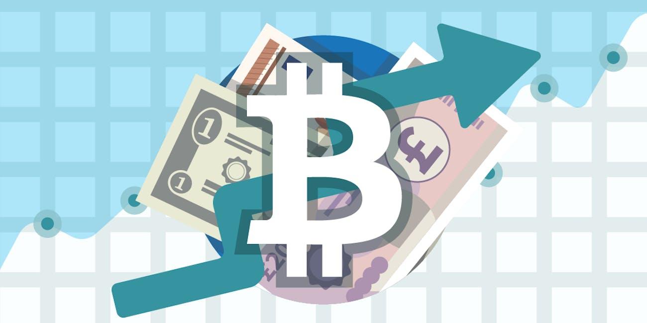 Bitcoins value 2009 kia cs go betting loss of a pet
