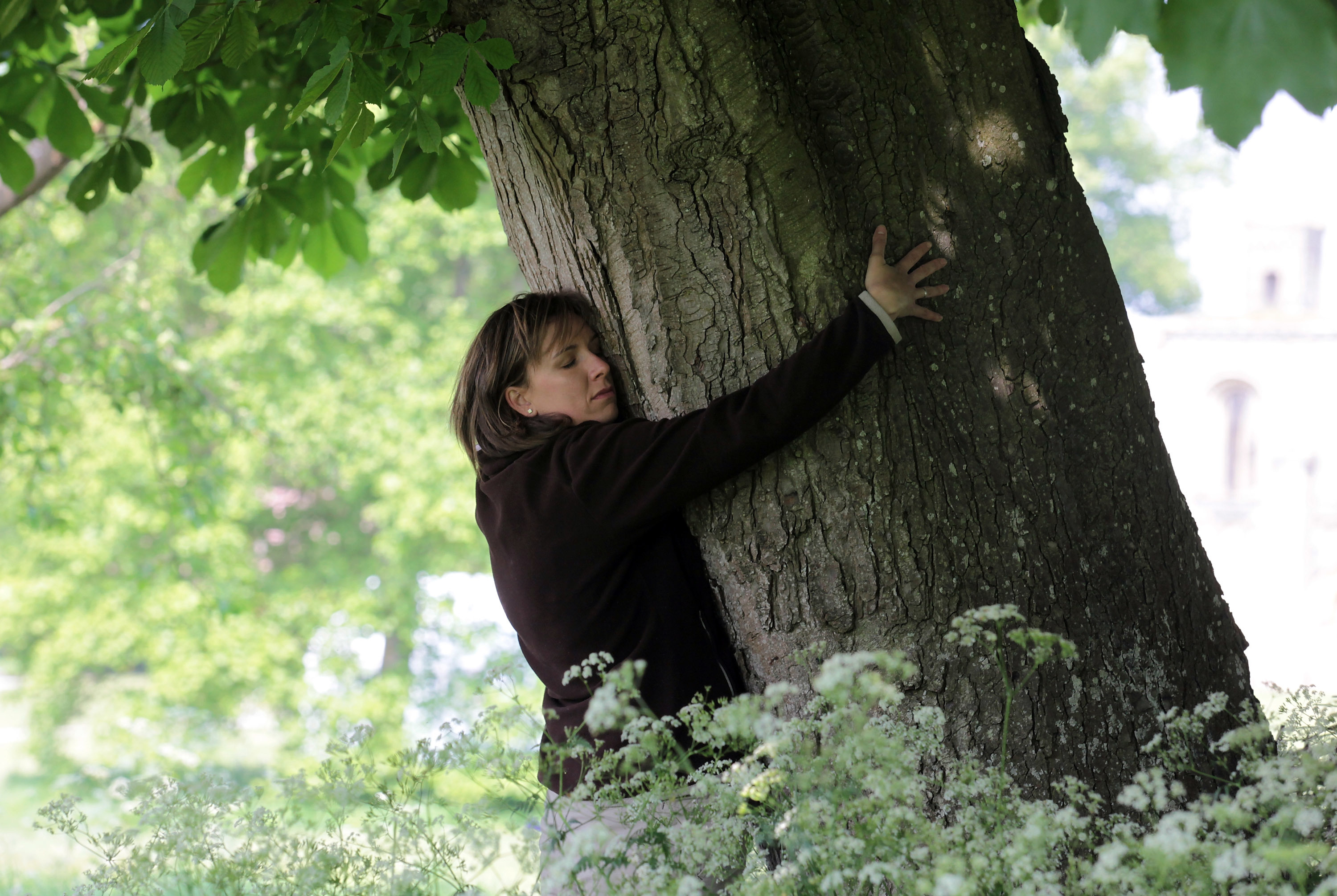 Sexual Attraction To Trees