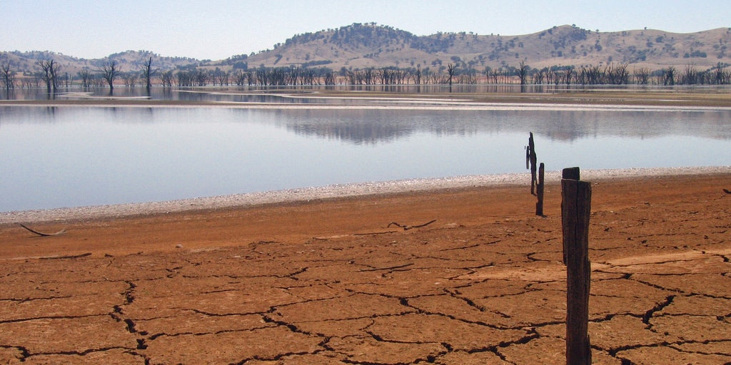 Drought reduces an Australian lake to just four percent of its former self.